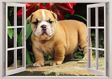 BULL MASTIFF Cani Animali Domestici Cuccioli Carini finestra effetto 3D Adesivo Parete Poster Vinile
