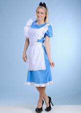 Long Womens Alice In Wonderland Style Costume