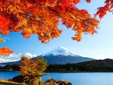 Mount Fuji Japan Autumn Fall Beautiful Nature Giant Print POSTER Affiche