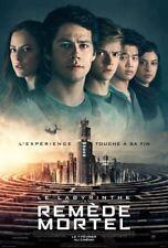LABYRINTHE : LE REMÈDE MORTEL (LE) - Affiche cinéma 40X60 - 120x160 Movie Poster