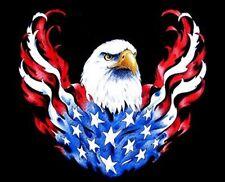 New listing Mighty American Eagle Flag Biker Sweatshirt W67