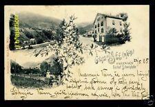 Tirol * SEE (Wald) Gasthof Schweighofer * AK um 1910