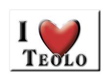 CALAMITA VENETO ITALIA FRIDGE MAGNET MAGNETE SOUVENIR I LOVE TEOLO (PD)
