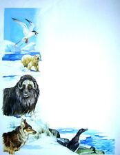 Wildlife Conservation p0lar región Oso Wolf Etc Años 70