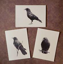 Set of 12 Handmade Blank Crow Bird Print Note Cards