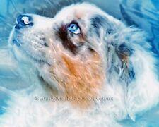 Blue-eyed Puppy ~ Australian Shepherd, Cattle Dog ~ Diy Cross Stitch Pattern