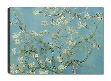 Quadri Moderni Stampa su Tela Canvas cm 100x70 Dipinti Van Gogh Mandorlo
