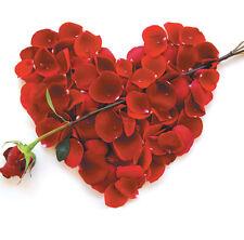 Stunning Wedding Anniversary Card Husband Wife Partner -Amazing Designs Freepost