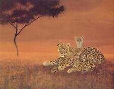 """Vida silvestre animal 4 elegir 30 diferentes 16x20 """"las impresiones de arte más en la tienda"""
