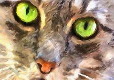 195754 GREEN EYED CAT PAINTING ART PHOTO Wall Print Poster CA