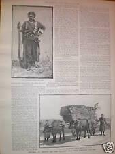 Pioneer nurse Kate Marsden cure for leprosy 1891 print