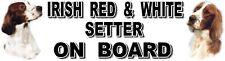 IRISH RED & WHITE SETTER ON BOARD Sticker By Starprint