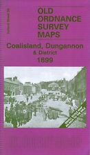 Mapa de Coalisland, Dungannon & distrito 1899