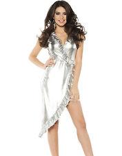 Disco Diva 1970's Womens Metallic Silver Ruffled Party Dress Halloween Costume
