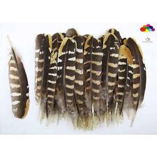 Diy Natural Pheasant Feather Black Yellow Tail 4-6in/10-15cm 10-100 Pcs Carnival