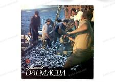 Ansambl Dalmacija - Ansambl Dalmacija YUG LP 1974 //1