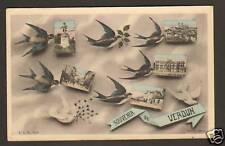 VERDUN (55) HIRONDELLES , Souvenir de VERDUN en 1906