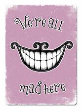 WTF ALL MAD Aquí rosa sonrisa Letrero Metálico De Pared Placa Arte