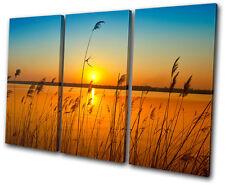 Sunset Seascape corn field TREBLE DOEK WALL ART foto afdrukken