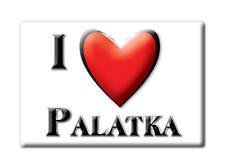 SOUVENIR USA - FLORIDA FRIDGE MAGNET AMERICA I LOVE PALATKA (PUTNAM COUNTY)