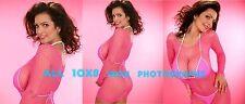 Denise Milani - 10x8 inch Photo's #m06 in Pink Bikini & Fishnet Mini Dress