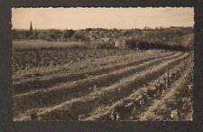 THORE-la-ROCHETTE (41) VIGNOBLE , VILLAS & EGLISE en 1953