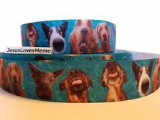 "Grosgrain Ribbon Funny Silly Dog Faces Puppy Blood Hound Weimaraner Terrier 1"""