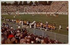 Purdue Boilermakers Football Stadium Game Postcard
