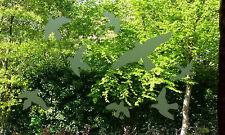 Vögel Aufkleber - Vogelschutz - JETZ  AUCH AUS MILCHGLAS FOLIE SILBER -  Nr.501