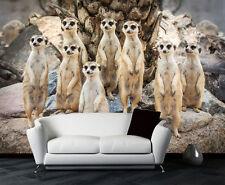 Adorable Meerkat Family Wild Full Wall Mural Photo Wallpaper Print Home Dec Kids