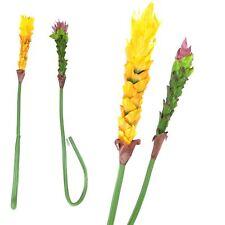 Large Ginger Flower Tropical Stem - Artificial Silk Latex Flowers Long Spray