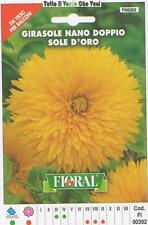 FLORAL - BUSTA SEMENTI GIRASOLE NANO DOPPIO SOLE D'ORO - DA VASO PER BALCONI