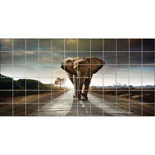 Stickers carrelage mural Eléphant 2032