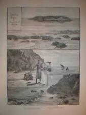 Turtle Egg Digging Diamond Island Burma 1887 print