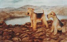 LAKELAND TERRIER DOG FINE ART LIMITED EDITION PRINT