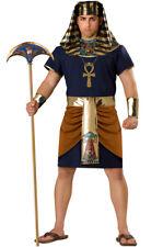 Egyptian King Pharaoh Plus Size Halloween Costume