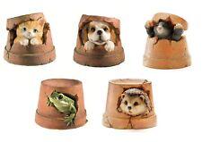 Animal Flower Plant Pot Garden Ornaments - Resin Dog Cat Mole Hedgehog & Frog
