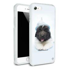 Newfoundland Puppy Dog Knitted Hat Slim Hybrid Case Fit iPhone 8, 8 Plus, X