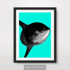 Cartel De Impresión Arte Sunfish animales mar peces oceánicos exóticas Brillante Decoración Ilustración