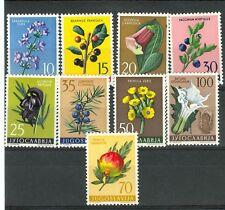 FIORI TIPICI - FLOWERS YUGOSLAVIA 1959