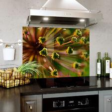 Kitchen Tempered Glass Splashbacks Splashback Panel Macro Plants Dynamic 0372