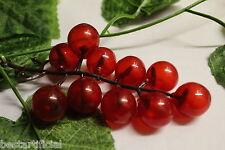 Best Artificial 180cm 1.8m Edera Uva Ghirlanda Da parete Vite Filo Pianta frutta