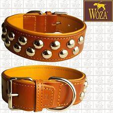 WOZA Premium Hundehalsband Vollleder Lederhalsband Rindnappaleder ОШЕЙНИК H1866