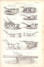 1874 stampa Agricoltura Aratro Zappa Coltivatore & C
