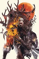 The Witcher 3 Wild Hunt Art Poster T255  A4 A3 A2 A1 A0 