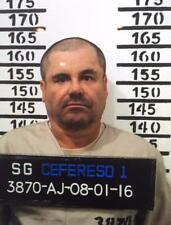 EL CHAPO GUZMAN MUGSHOT GLOSSY POSTER PICTURE PHOTO sinaloa cartel drug mex 3288