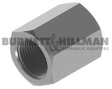 Burnett & HILLMAN hydraulique BSP fixé femelle x Adaptateur 4-29