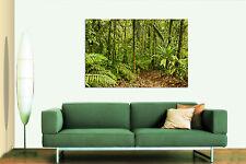 3D Plant Forest Tropical 5 Wall Stickers Vinyl Wall Murals Print Aj Wall Us Kyra
