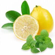 Liquid MixPack Minze-Zitrone 50 / 100 ml - 0/3/6/9/12 mg/ml - Made in Germany!