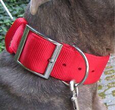 Collier En Nylon Rouge American Staffordshire Pit-bull Bulldog Bull-terrier